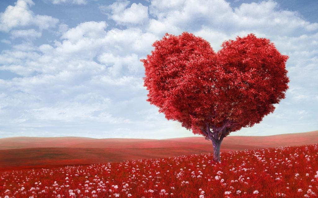 عشق,زندگی,خانواده,طلاق,ازدواج,موفقیت, زناشویی,دختر ,پسر,